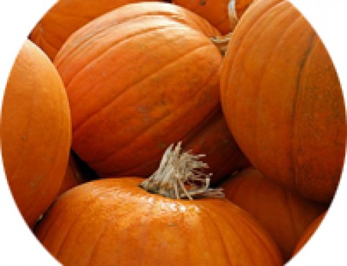 Pumpkins are not just for Halloween!